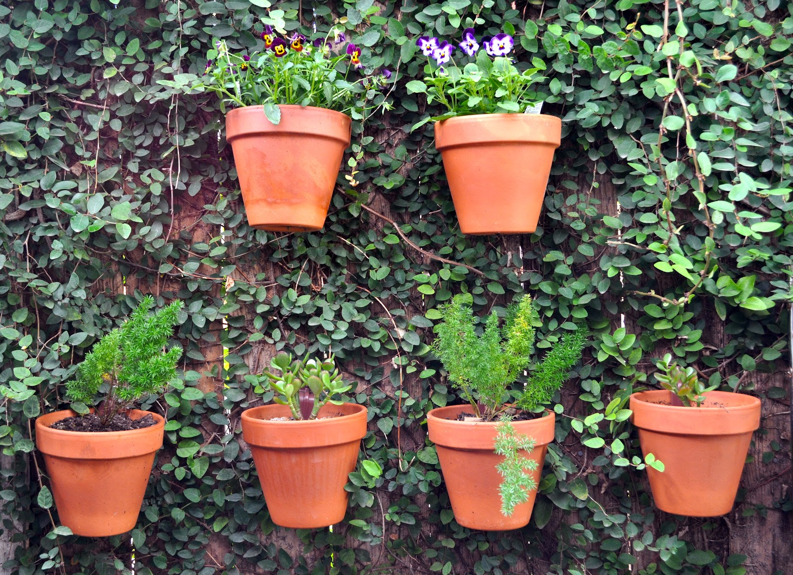 Photo gallery fences hang a pot - Flower pots to hang on fence ...