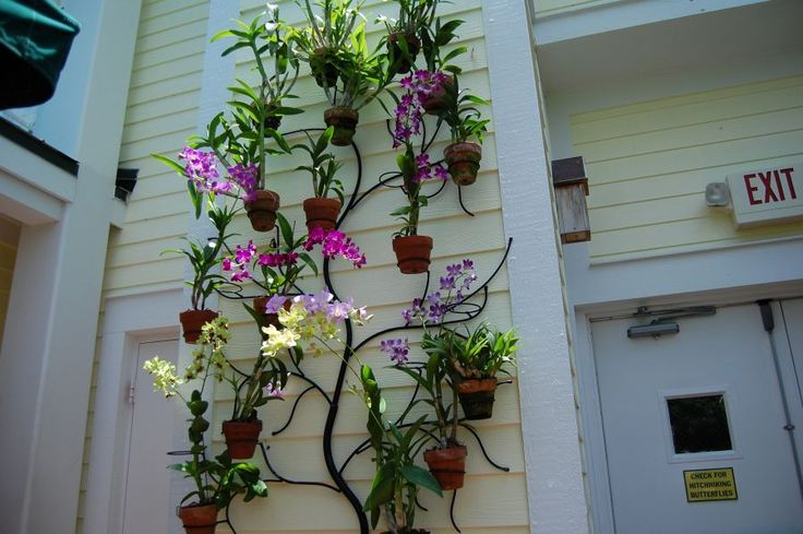 Photo Gallery Wrought Iron Hang A Pot
