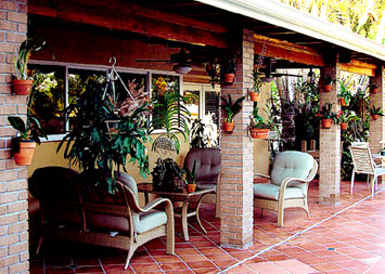 Hang orchids around porches and patios.