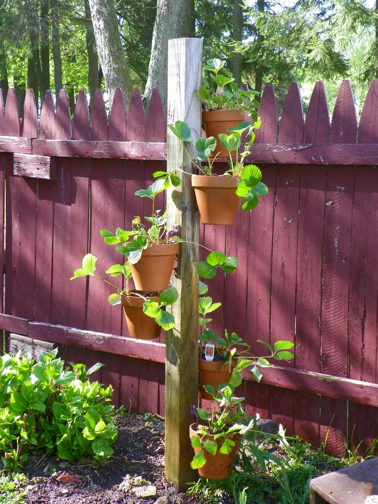 Hang A Pot For Posts