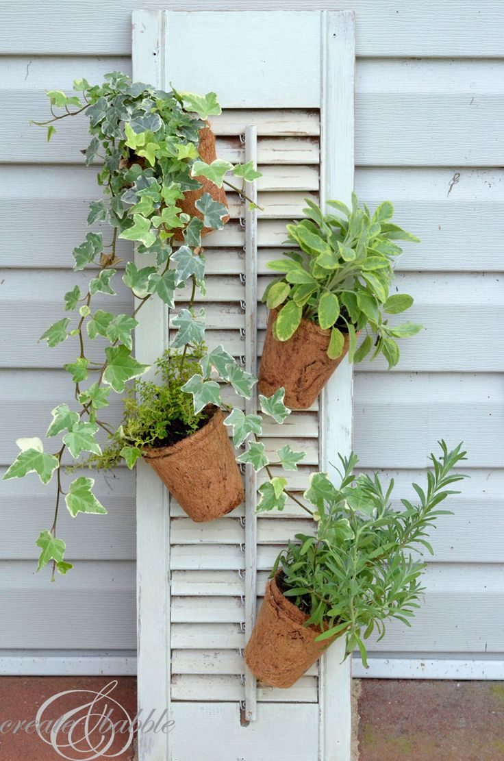Wall Mounted Plant Holders Container Garden Design
