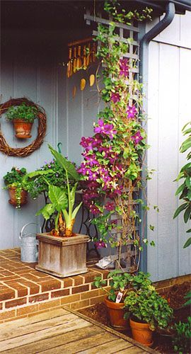 Outdoor Hanging Plants Deck Hangers Hanging Plant Pot