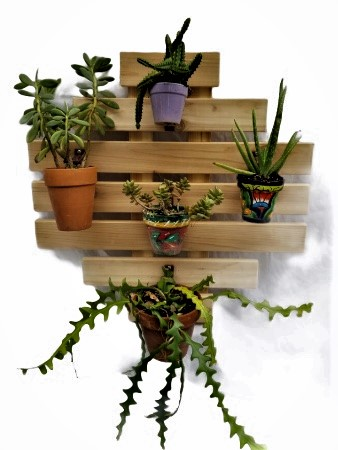 7 board contemporary backdrop succulent